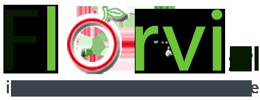 Logo  Florvi SRL